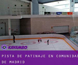 Pista de patinaje en comunidad de madrid gu a de lugares for Pistas de patinaje sobre ruedas en madrid