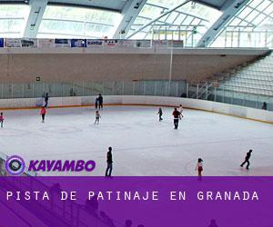 Pista de patinaje en granada gu a de sitios para patinar for Pistas de patinaje sobre ruedas en madrid