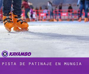 Pista de patinaje en mungia vizcaya pa s vasco for Pistas de patinaje sobre ruedas en madrid